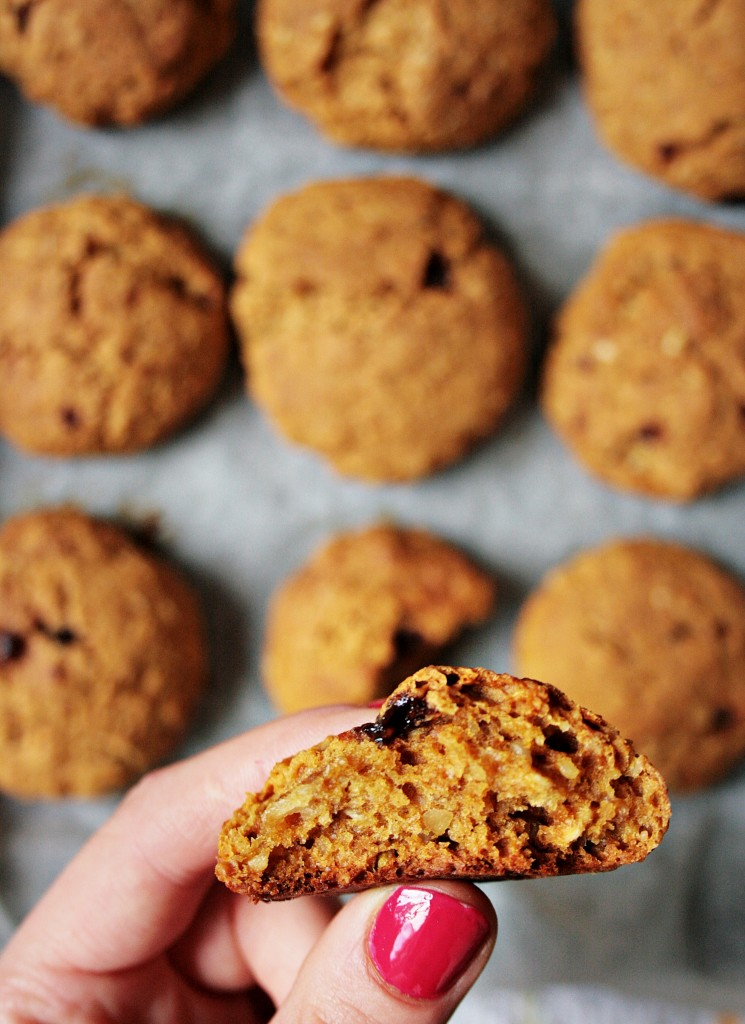 cookies zucca 5